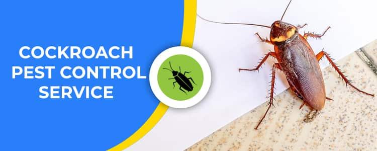 Cockroach Control Wanniassa